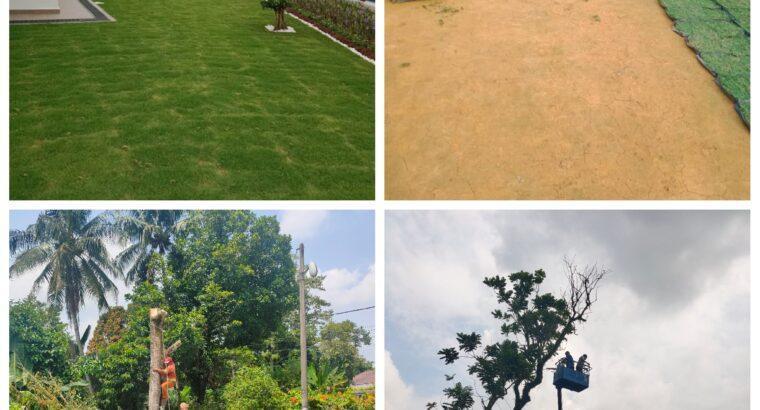 Tebang Pokok Tanam Rumput Pembersih Kawasan